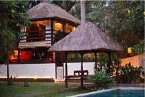 Beautiful 2 Bedrooms Leasehold Villa For Sale 10 Minutes from Ubud Center