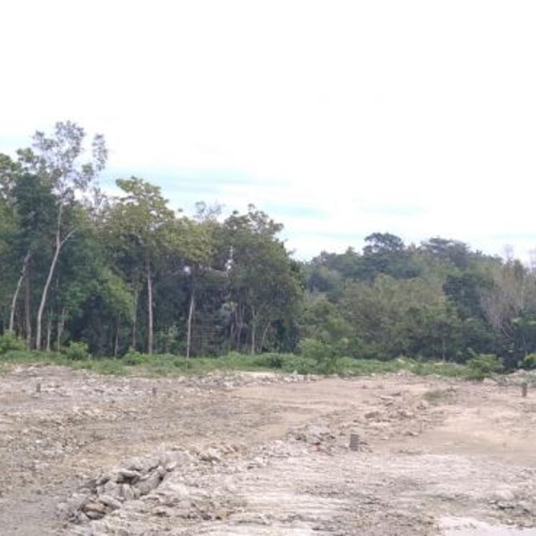 Tanah-Bantul-4