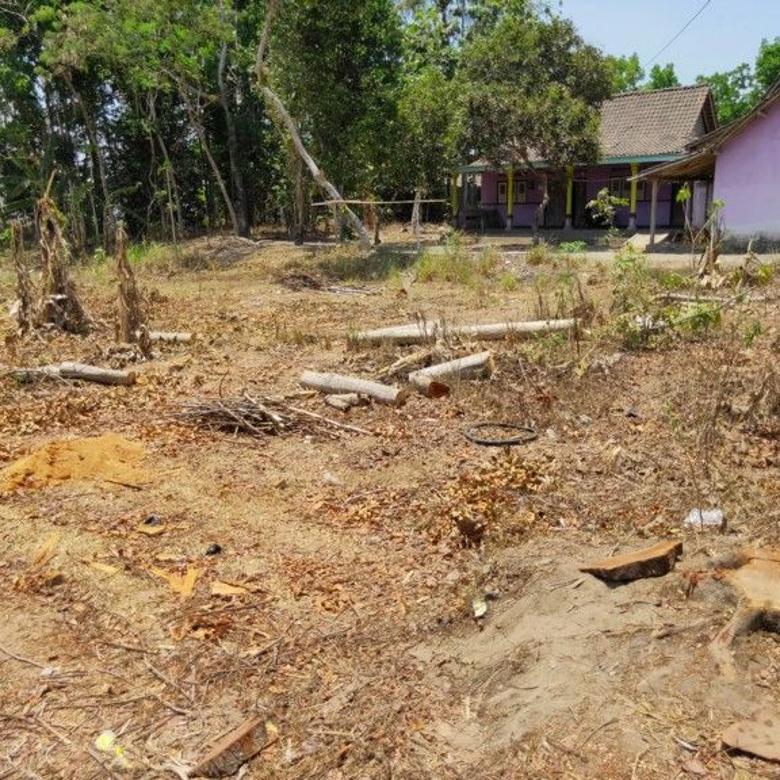 Mau Untung? launching Kavling Prambanan Village Beri Keringana