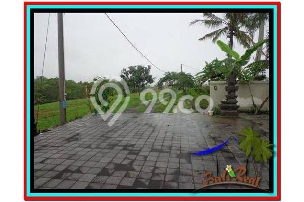 Properti Strategis 5.200 m2 View laut, sawah dan gunung di Tabanan TJTB185 4594126