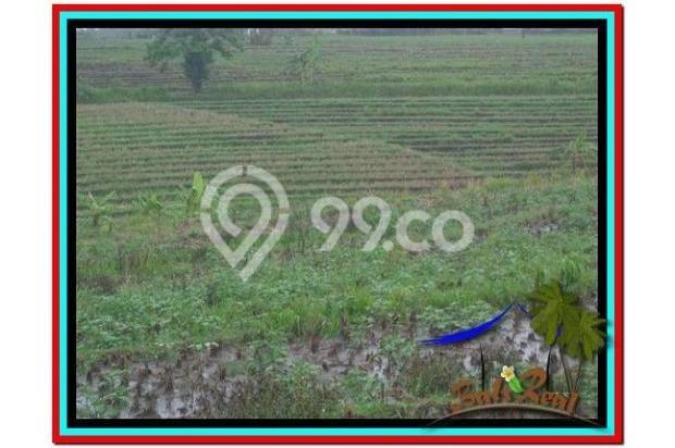 Properti Strategis 5.200 m2 View laut, sawah dan gunung di Tabanan TJTB185 4594125