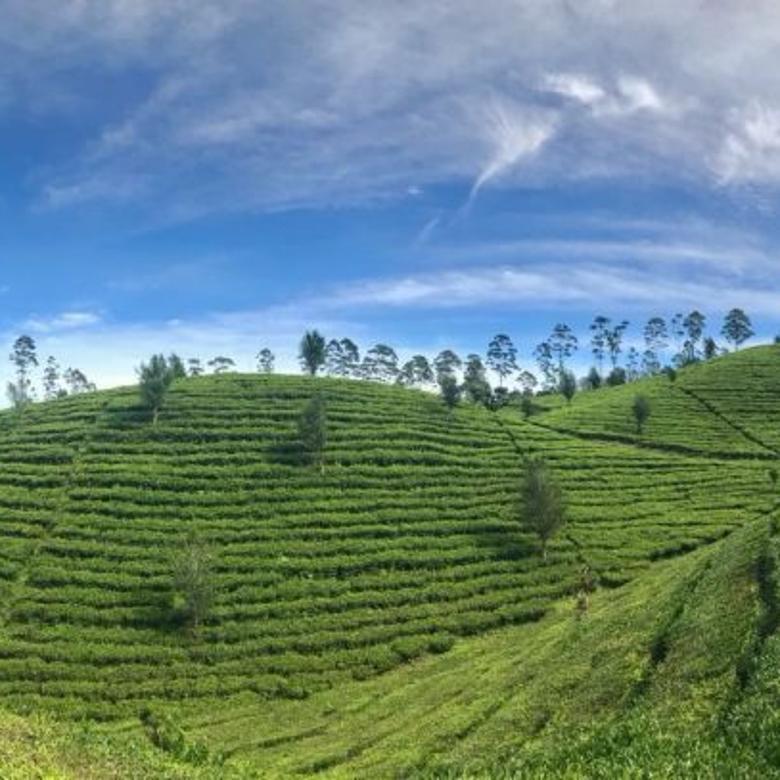 Vila-Bandung Barat-3