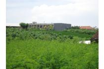 Dijual Tanah Di Canggu View Sawah