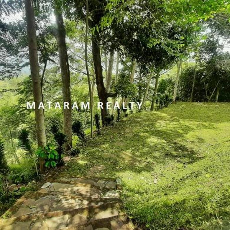 Villa Tanah Luas Dan Hitung Tanah Dalam Area Lembang, Bandung