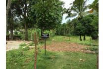 Tanah Kavling Pagar Dewa Kota Bengkulu Luas 570 M2