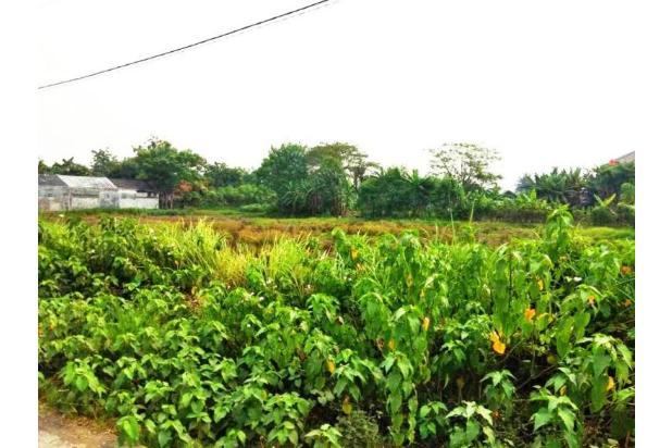 Rp9,5mily Tanah Dijual