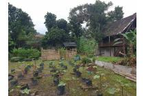 Tanah murah Ciapus Bogor cocok untuk investasi
