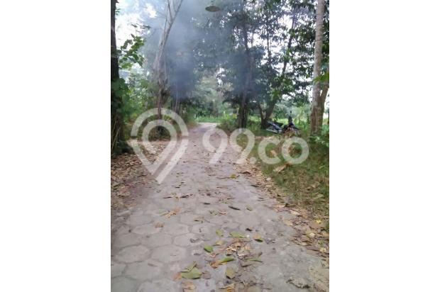 FAKTA: Perumahan Developer Mahal, Beli Tanah Di Pendowoharjo Pasti Murah 13426646