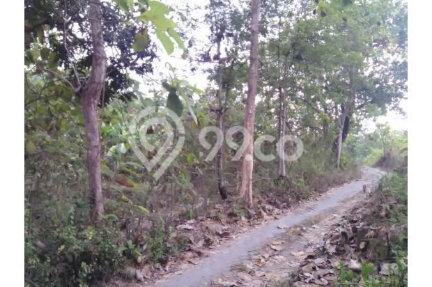 FAKTA: Perumahan Developer Mahal, Beli Tanah Di Pendowoharjo Pasti Murah 13426647