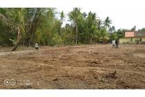 Tanah Murah Bersertifikat di Citra Tayuban Kulonprogo