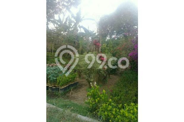 Tanah pasqr bunga Sidomulyo batu 13960994