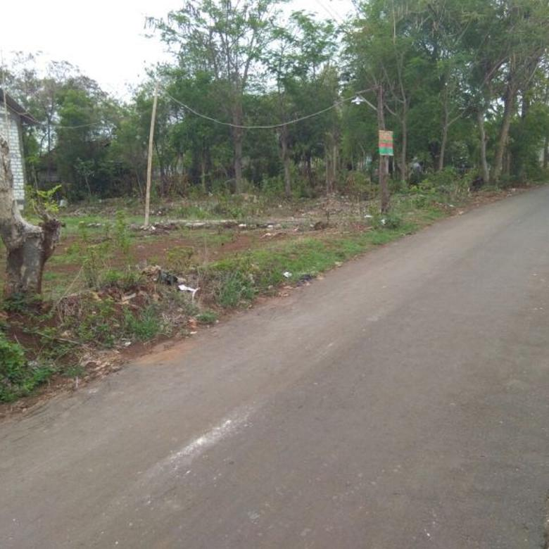 Tanah murah bonus rumah di Karang Indah Timur Tegalagung Tuban