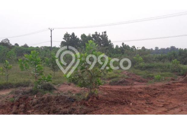Dijual Tanah Kawasan Industri Kutruk Tigaraksa Tangerang 18352021