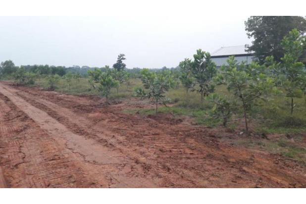 Dijual Tanah Kawasan Industri Kutruk Tigaraksa Tangerang 18352023