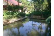 Vila-Bogor-10