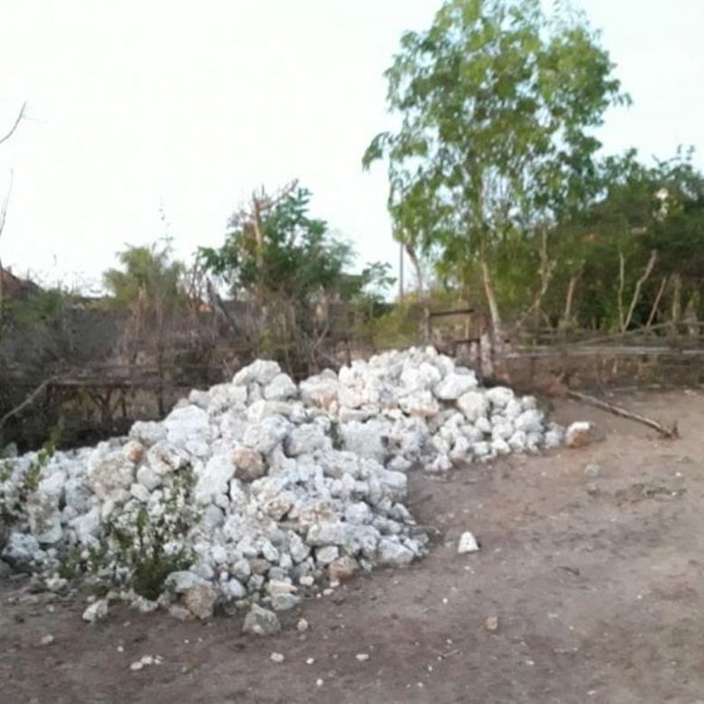 Dijual tanah di ungasan,berjarak 300 Meter dari Pantai melasti