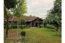 Rumah Semi Etnik Luas Tanah 5815 m2 Tepi Jalan Raya Lingkungan Asri