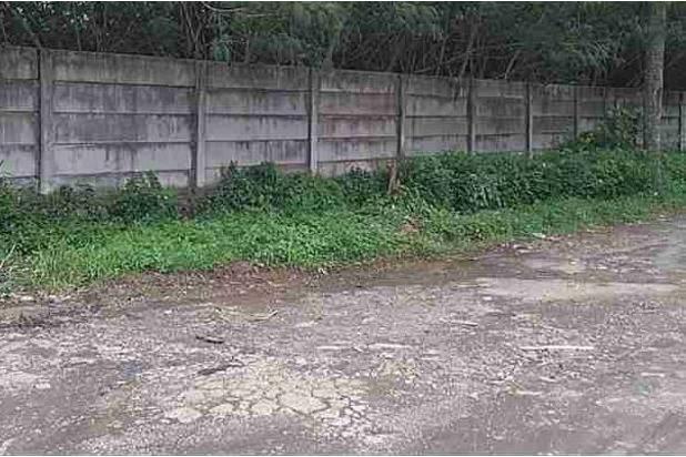 Rp213mily Tanah Dijual