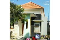 Dijual/Disewakan Rumah di BTN Sandik Batulayar R158