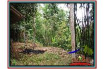 Tanah Langka Prospektif 10.000 m2 Ubud Tampak Siring YUB519