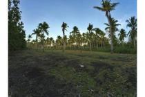 Dijual Tanah di desa isimu raya, kecamatan TIbawa, provinsi Gorontalo.