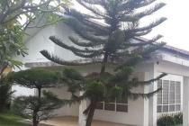 Rumah Jalan Suwiryo Menteng Hitung Tanah luas 1250m Murah 100juta/m Jarang Ada