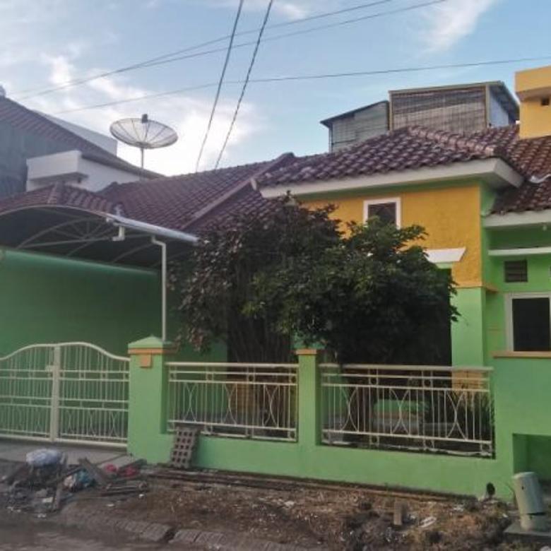Rumah Langka Harga Termurah di  PURIMAS Baru Renovasi
