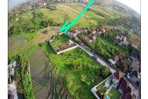 Tanah View Sawah Di Pererenan Canggu Bali (DWTCGU100)