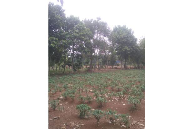 Rp1,63trily Tanah Dijual