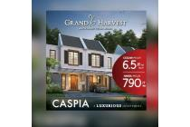 Grand Harvest New Cluster Caspia