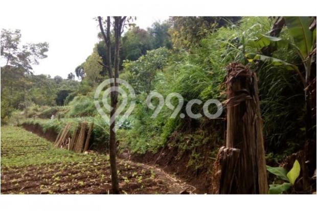 Dijual murah Tanah di Cisarua Bandung, Tanah luas Dijual di Cimahi 10971642