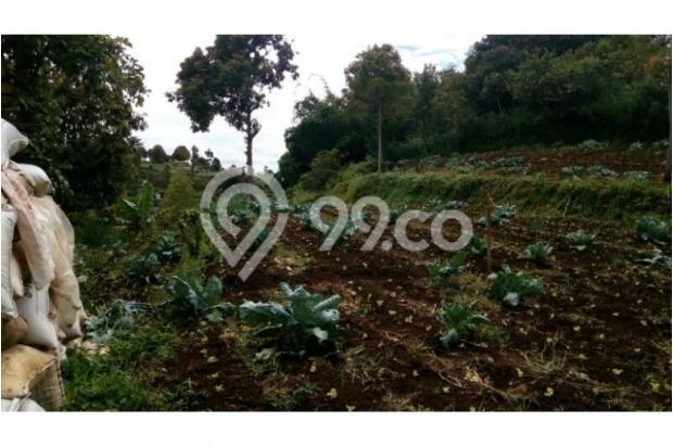 Dijual murah Tanah di Cisarua Bandung, Tanah luas Dijual di Cimahi 10971644