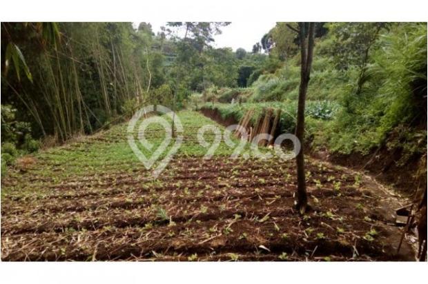 Dijual murah Tanah di Cisarua Bandung, Tanah luas Dijual di Cimahi 10971646