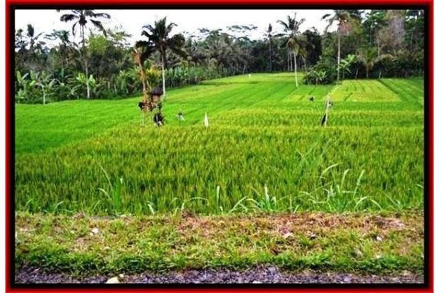 Rp5,64mily Tanah Dijual