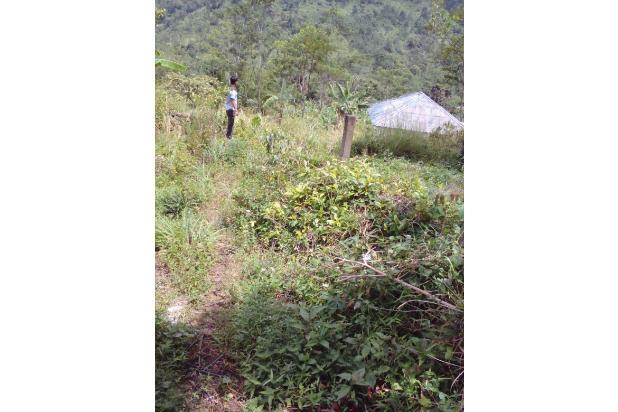 Di jual tanah best view pegunungan 14737729
