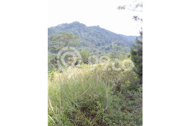 Di jual tanah best view pegunungan 14737733