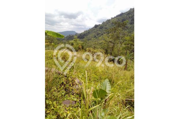Di jual tanah best view pegunungan 14737734