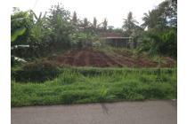tanah kebun