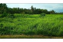 Tanah Termurah Dekat Tanah Lot