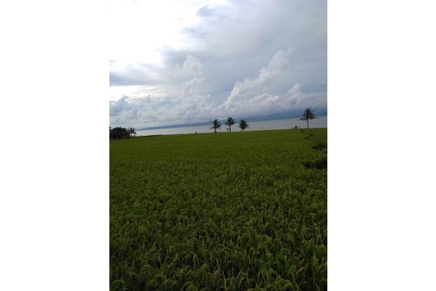 Rp2mily Tanah Dijual