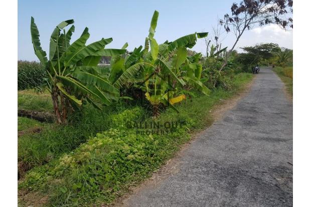 Rp50,5mily Tanah Dijual