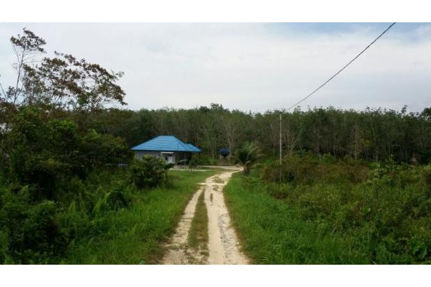 Rp7mily Tanah Dijual