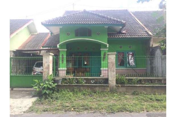 Info Rumah Dijual Jogja, Rumah Murah di Sleman Jogja Dekat SMA 1 Turi 12273907