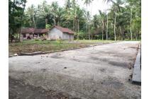 Jalan 6 Meter, Cash Tahap 12 X Bebas Bunga, SHM