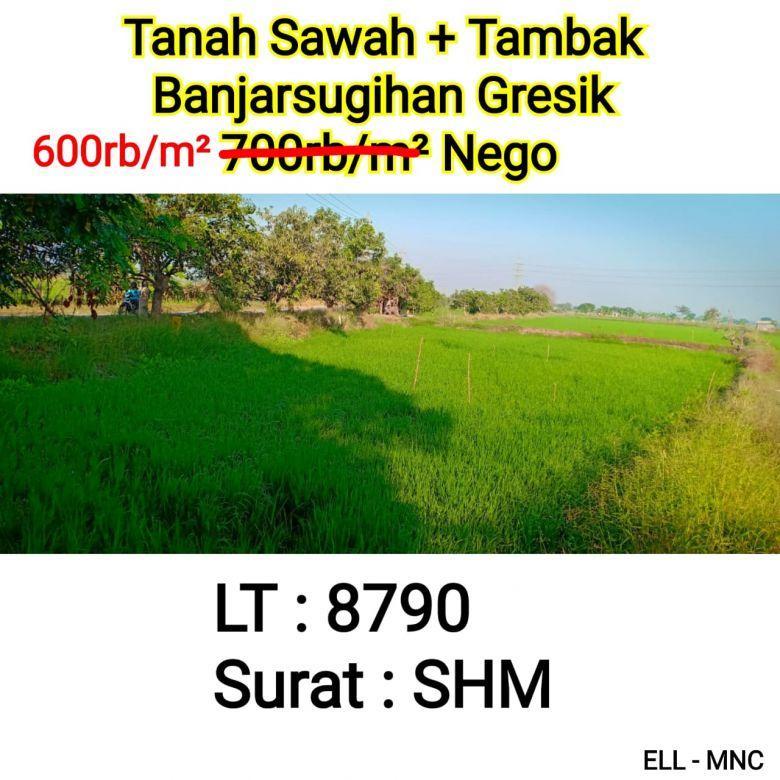 Tanah Sawah + Tambak Banjarsugihan Gresik Siap Bangun