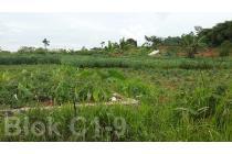 Tanah Dijual 400 m2 Kavling BRI Depok