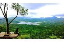 Cari Penginapan Yogyakarta OLX, Jogja Banyak Tempat Wisata Menarik