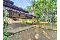Cirendeu - Rumah Mewah Tropis, Private Pool Besar, Kondisi Siap Huni.