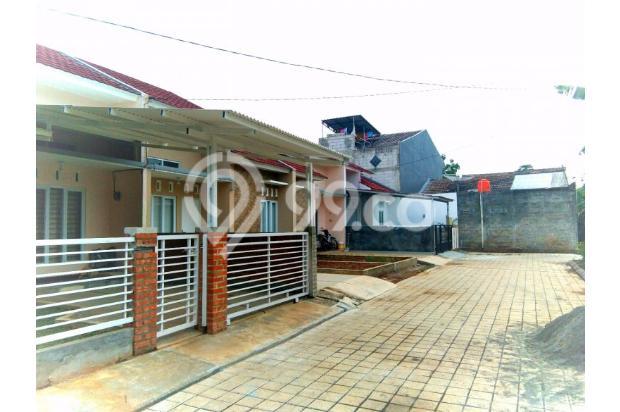 rumah minimalis 1 lantai lokasi strategis harga terjangkau 14634358