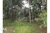 Tanah di Cikembulan Pangandaran Ciamis